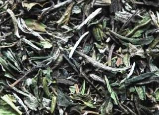Pai Mu Tan weisser Tee - Supercloseup 2