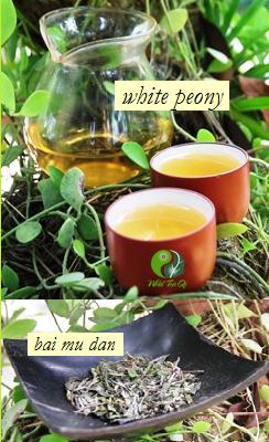 Pai Mu Tan / Bai Mu Dan / White Peony Weißer Tee