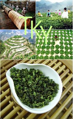 Tie Guan Yin Qingxiang (Delicate Fragrance)