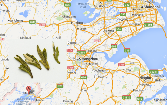 Location of wild Long Jing green tea
