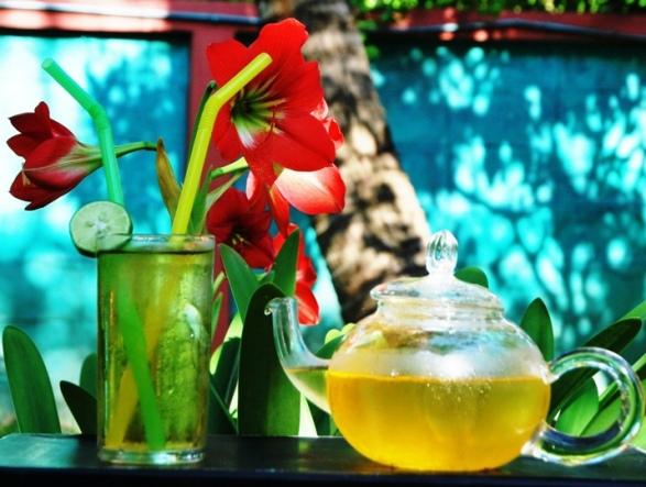 Hillside Blend Green aromatische Teemischung aus Nordthailand zubereitet als Eistee