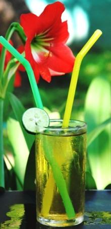 Ein Glas Hillside Blend Green aromatische Teemischung mit einer Scheibe Zitrone