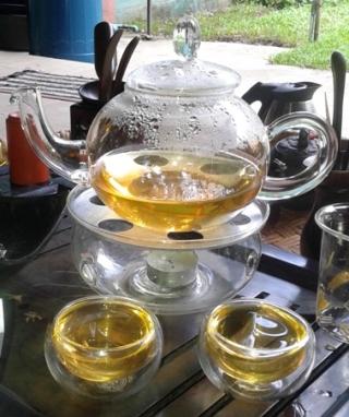 Artisan High Mountain Bi Luo Chun serviert in Glasskanne mit Glaschälchen