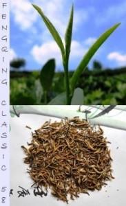 Dianhong Fenqing Classic 58 Schwarzer Tee