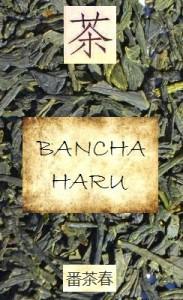 Japanischer Frühlings-Bancha