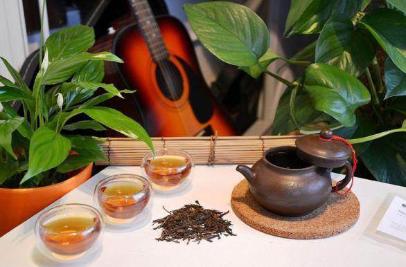 Zubereitung und Verkostung von Hojicha Kiniro