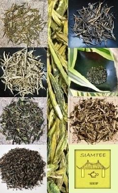Hochwertige Artisan-Tees aus biodiversem Anbau und Wildsammlung