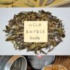 Wild Purple Buds ungereifter ('sheng') Pu Erh Tee