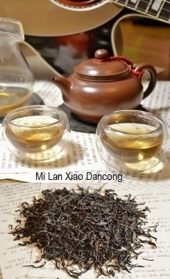 Mi Lan Xiang (Honey Orchid) Phoenix Dancong Oolong Tee
