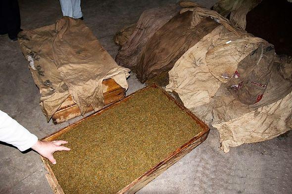 Spezieller Oxidationsprozess von Keemun Schwarzer Tee in Holzverschalungen