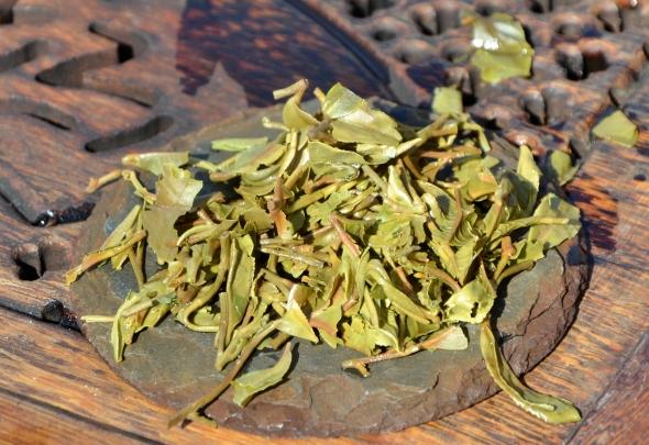 Jungpana First Flush 2017 - nasse Teeblätter nach dem Aufguss