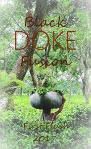 Doke Black Fusion Schwarzer Tee First Flush März 2017