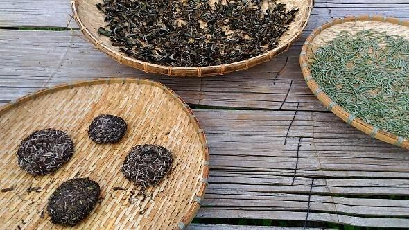Trocken der Teeblätter (links und Mitte: Honey Hill Sheng Pu Erh Tee; rechts: White Moonlight Buds)