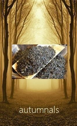 Autumnals - Tees der jährlichen Herbstpflückung in Darjeeling und Assam