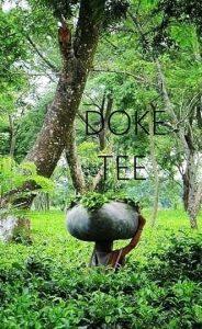 Doke Tee - Tees aus dem Doke Teegarten in Bihar
