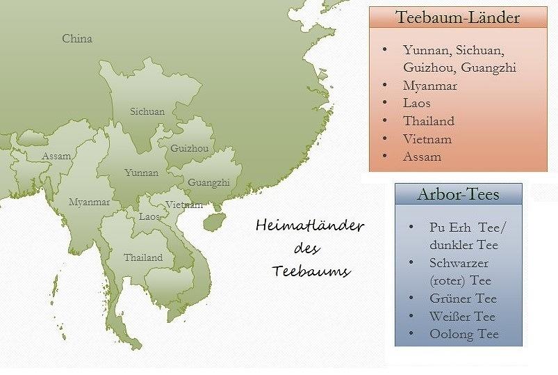 Heimatländer des Teebaums
