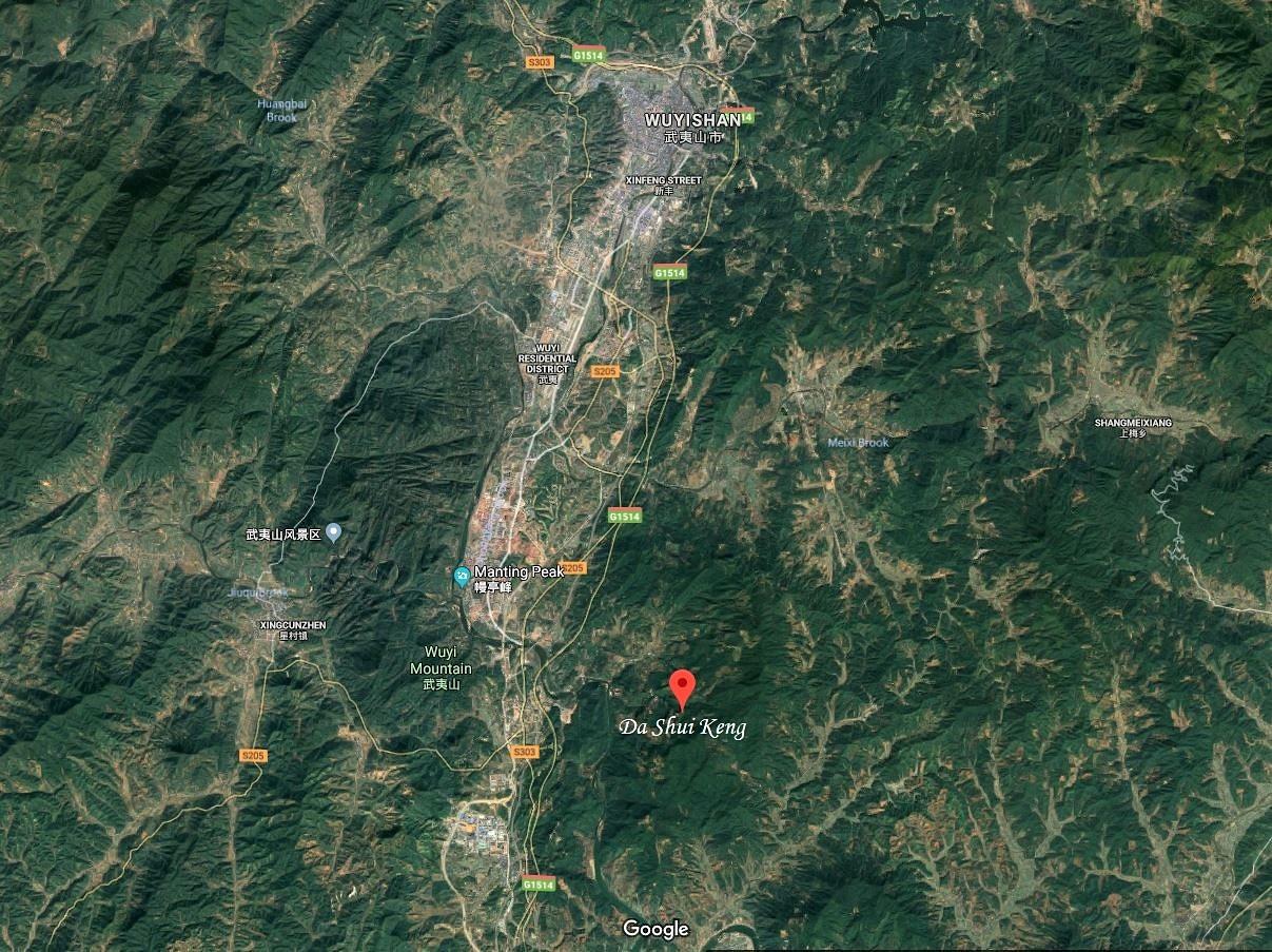 Da Shui Keng - Dorf in Wuyishans Banyan-Gebiet - Tie Luo Han Teegarten der Chen-Familie