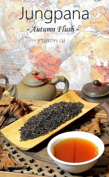 """""""Autumnal"""" des Teegartens Jungpana in Darjeeling"""
