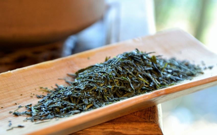 Sencha Fuji - unbeschatteter japanischer Sencha-Tee der Frühlingspflückung am Mount Fuji