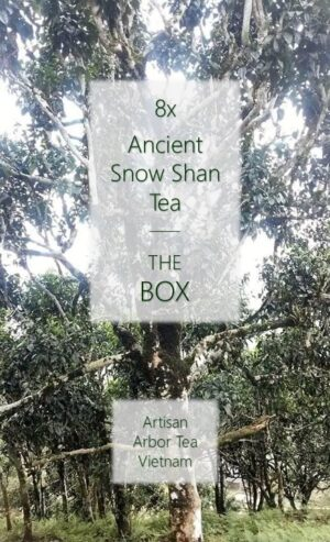 8 x Ancient Snow Shan Sample Box