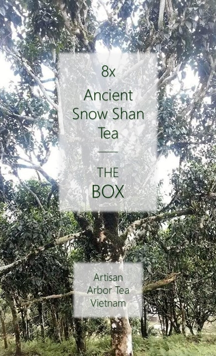 Ancient Snow Shan Box : 8 x Ancient Snow Shan Tee - Artisan Arbor Tees aus Nordvietnam
