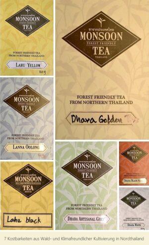"""""""7 Kostbarkeiten"""" – Tee aus Wald- und Klimafreundlicher Kultivierung in Nordthailand"""