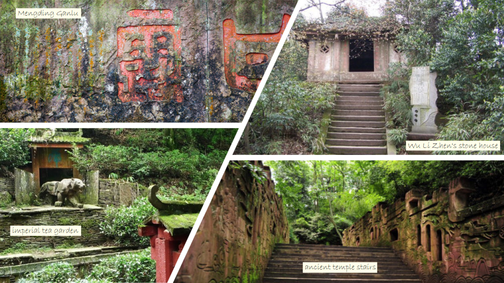 Mengding Shan : Ancient Temple + Imperial Tea Garden