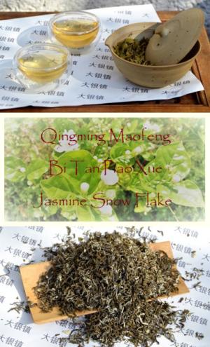 Qingming Maofeng Jasmine Snowflake (Bi Tan Piao Xue) Jasmin-Grüntee