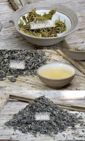 "Tai Con Linh ""Jungle Green"" Wilder Grüner Tee"