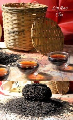 Liu Bao Dunkler Tee (Guanxi Hei Cha) 2007