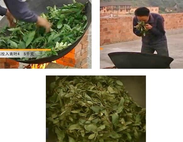 Erstes Erhitzen des Teeblätter