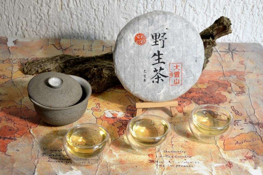 Da Xue Shan Ye Sheng Pu Erh Tee - wilder ungereifter Pu Erh Tee aus Da Xue Shan, Bezirk Yongde, Präfektur Lincang, Süd-Yunnan, China