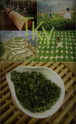 Tie Guan Yin Nonxiang Oolong Tee, Anxi, Fujian, China: Produktbild